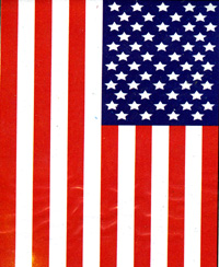 U.S.A. Nylon Applique Flag 28x48 (100% all weather nylon sewing stars & stripes w/ sleeve hanger & brass grommets)