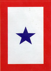 Blue Star Service Garden Flag 13.5x18