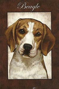 Beagle Silk Reflections Flag 29 x 43