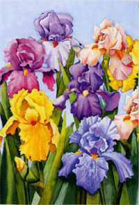 Blooming Iris Garden Flag 12.5x18