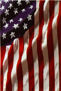 American in Motion Silk Reflections Flag 29x43