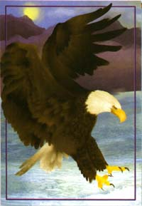 Majestic Eagle Flag 28x40