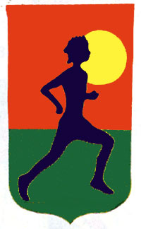 Runner Applique Flag 28x48