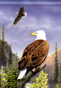 Bald eagles Flag 28x40