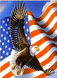 Patriotic Eagle Flag 28x40