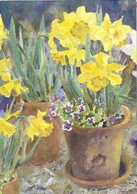 Potted Daffodils Flag 28 x 40