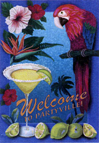 Partyville Flag 28x40